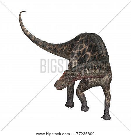 3D Rendering Dinosaur Dicraeosaurus On White