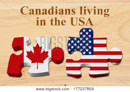 Laws and rules for living in the USA Two puzzle pieces with the flags of USA and Canada on wood with text Canadians living in the USA 3D Illustration