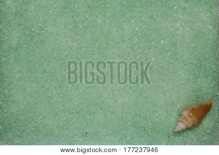 Background with mint green sea salt and seashell, closeup