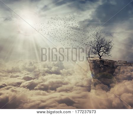 Young man standing on the peak of a cliff over clouds watching at a flock of birds flying from a strange bare tree. The tree of death symbol journey and discover.