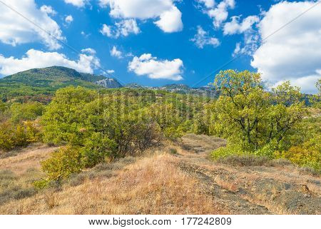 Landscape in Crimean mountains near Gurzuf resort at fall season.