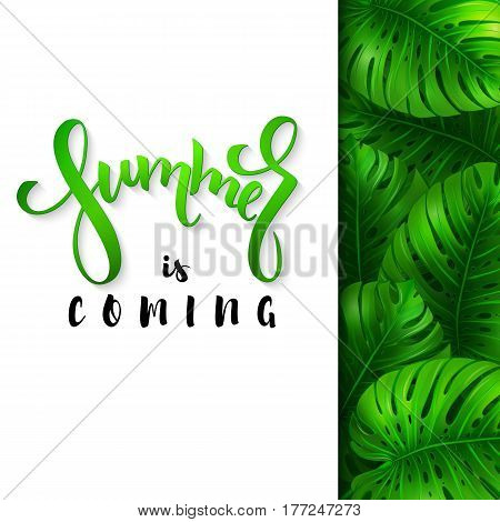 vector illustration of hand lettering poster - summer is coming with paper sheet on a background monstera leaves.
