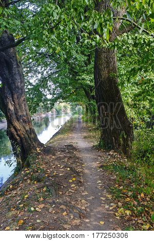 Park of Grugnotorto (Lombardy Italy) between Milan and Brianza in autumn. Path for bicycle and pedestrian along the Villoresi canal
