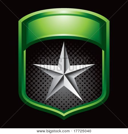 silver star on green shiny display