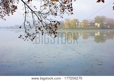 Autumn landscape with river in haze. Branches over water with autumn leaves in early morning