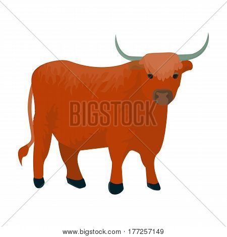 Brown bull with horns.Mountain bull is a symbol of Scotland.Scotland single icon in cartoon style vector symbol stock web illustration.