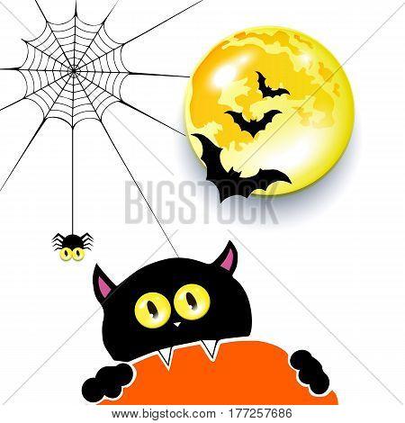 vector spider halloween moon illustration cat cartoon