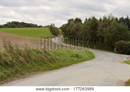 Small danish country road at summer time