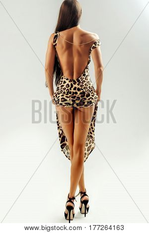 Pretty Sexy Girl In Leopard Dress With Open Back, Buttocks