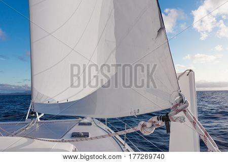 Sailing Yacht Catamaran Sailing In The Sea. Sailboat. Sailing.