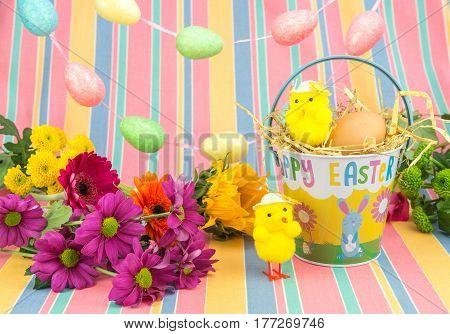 Easter Chicks, Fresh Flowers, Eggs, And Bucket. Spring Colours.