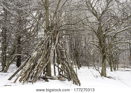 Teepee contructed out of logs and branches in a winter landscape covered with snow