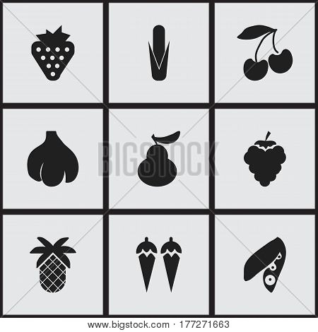 Set Of 9 Editable Vegetarian Icons. Includes Symbols Such As Grape, Maize, Duchess And More. Can Be Used For Web, Mobile, UI And Infographic Design.