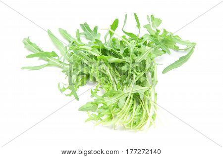 a fresh arugula leaves on white background