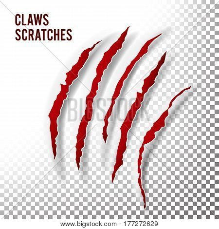 Claws Scratches Vector. Claw Scratch Mark. Bear, Tiger Paw Claw Scratch Bloody. Shredded Paper