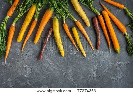 Carrots. Fresh colorful carrots on dark background. Flat lay top view copy space