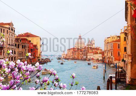 Basilica Santa Maria della Salute and Grand Canal at spring sunset, Venice, Italy