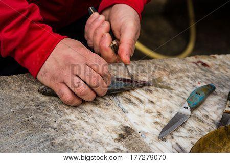 Fishmonger Cutting A Small Fish On A Cutting Board