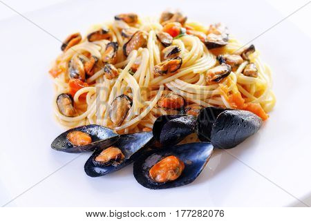 Dish prepared and ready to eat pasta with mussels and tomato. White background