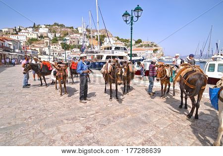 HYDRA ISLAND GREECE, MAY 27 2016: donkeys the means of transport at Hydra island Saronic Gulf Greece. Editorial use.