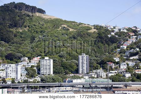 The view of Wadestown district the northern suburb of Wellington city (New Zealand).