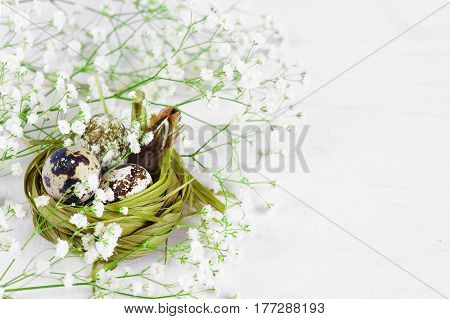 Green Nest With Eggs On The Flowers On The White Wooden Table