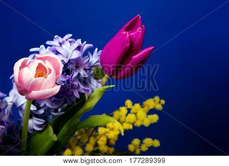 Beautifu springl flowers blossom on blue dark background for postcard for mother day