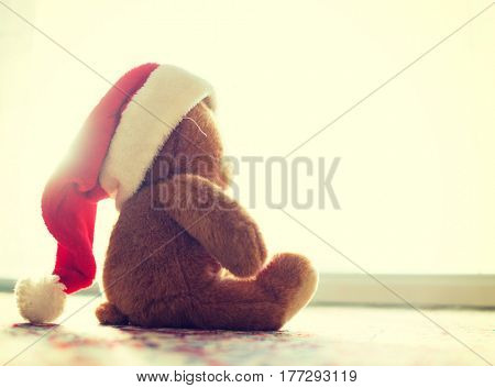 Christmas picture of cute Santa Claus teddy bear