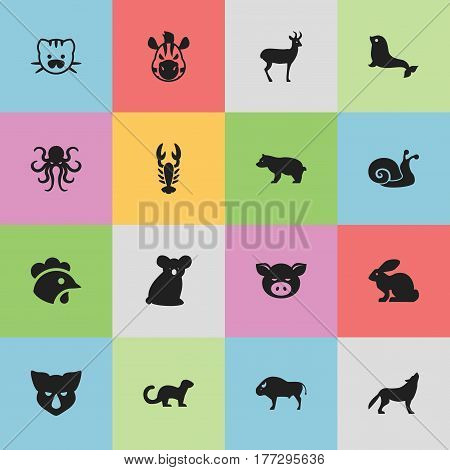 Set Of 16 Editable Zoo Icons. Includes Symbols Such As Crawfish, Wolf, Beast And More. Can Be Used For Web, Mobile, UI And Infographic Design.