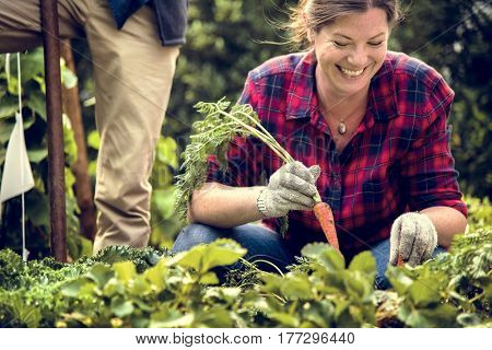 Woman farmer gardening at countryside