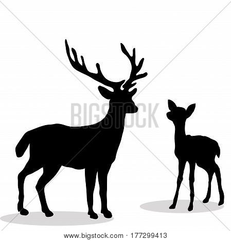 Black silhouette  Deer and Fawn white background. Vector illustration