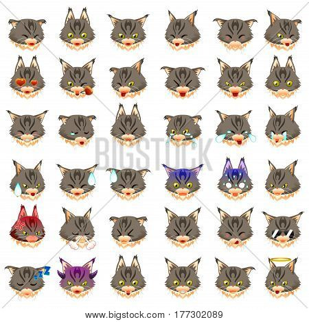 A vector illustration of Maine Coon Cat Emoji Emoticon Expression