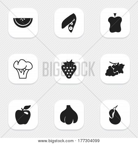 Set Of 9 Editable Vegetarian Icons. Includes Symbols Such As Grapevine, Avocado, Tree And More. Can Be Used For Web, Mobile, UI And Infographic Design.