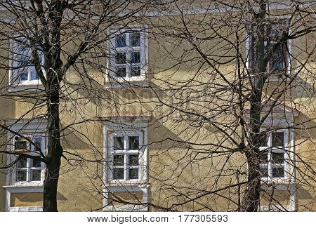 Close up old building through the trees. Square Sheptytsky 21, Morphological building of the Medical Academy. Ivano-Frankivsk Ukraine. March 16 2017