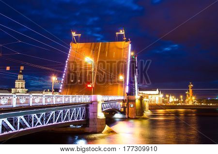 The Bridges Of The Night St. Petersburg The Palace Bridge