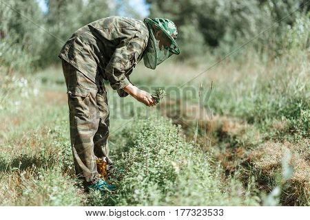 Woman in camouflage protection clothes gathering mint leaves by hands, selected focus with nature green forest background, shiny sunny light.
