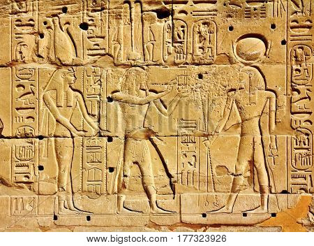 ancient egypt images and hieroglyphics on wall in karnak temple