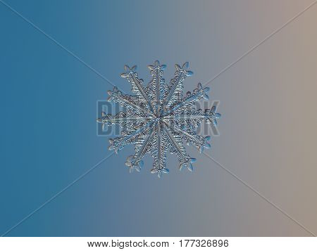 Macro photo of real snowflake: rare and unusual snow crystal with twelve symmetrical arms, glittering on smooth blue - pink gradient background in cold light.