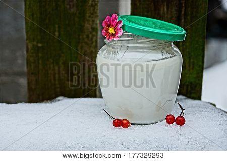 Glass jar with milk, viburnum berries on the snow