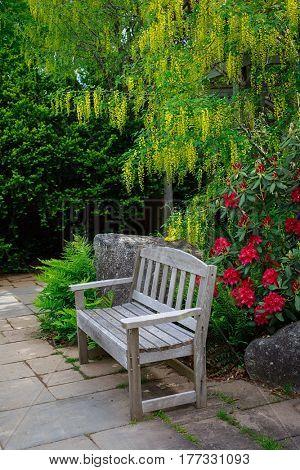 Park bench in a spring garden.