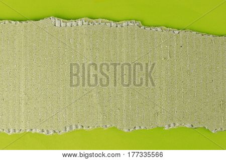 Piece of cardboard on a green background for your own text