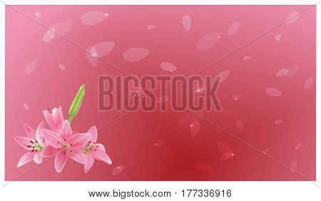 Background from a bouquet of lilies and flying petals