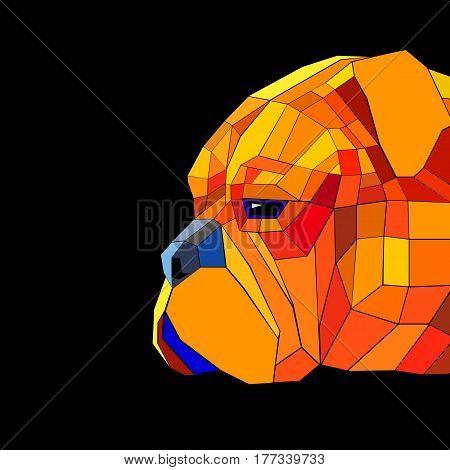dog mastiff illustration portrait puppy bullmastiff graphic eyes ears eye shadow face nose