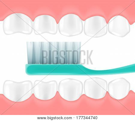 The vector illustration of a mouth with the toothbrush in it. Dentist teeth concept
