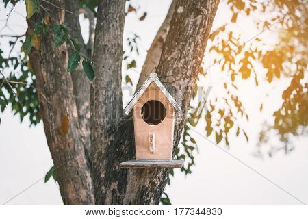 Small house of birds with circle door made from wood hanging on tree. Warm bright light from blurry background.