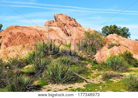 Rocks being uplifted from the San Andreas Fault surrounded by lush green chaparral grasslands taken at Vazquez Rocks in Agua Dulce, CA