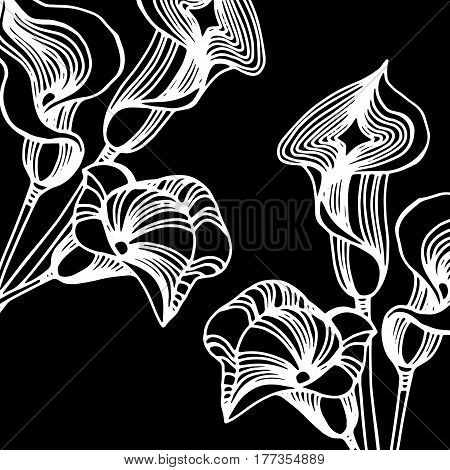 Wedding invitation callas. Calla lily on background. Bouquet of flowers. Wedding card. Vector illustration.