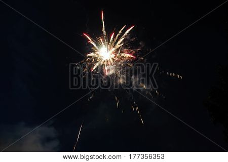 Fireworks in night sky, single shot of colorful firecracker in honor of the event. Fireworks multicolor fun and joyful.