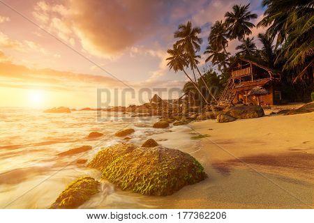 Tropical sandy beach at dawn. Sri Lanka