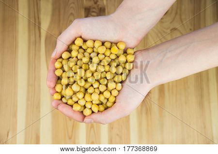 Top view of cheakpeas in hands. Handful of natural organic gram-chick peas in female hands photographed from top